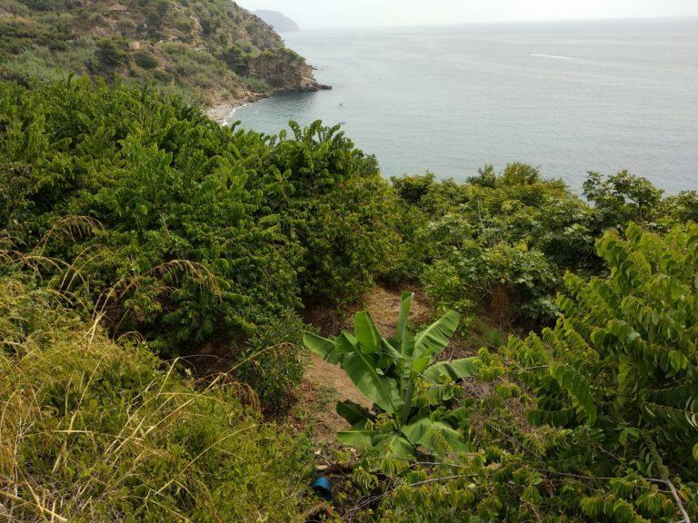 Terrain de Benja en bord de mer