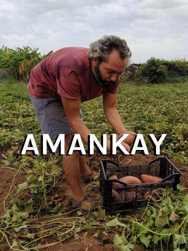 Priducteur Andaloubio Amankay