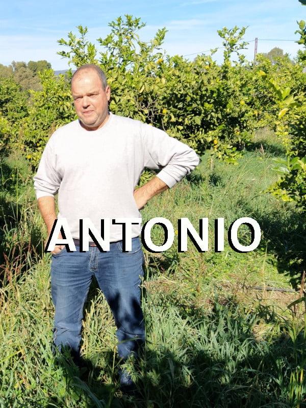 Producteur Andaloubio Antonio