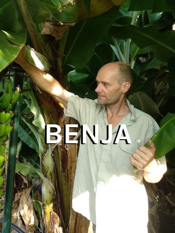 Producteur Andaloubio - Benja